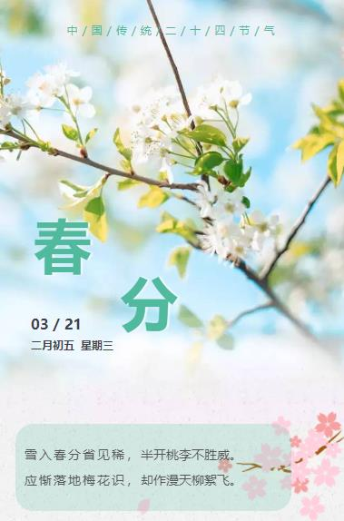 春分二十四节气之一传统节日绿色清新素材模板微信推文推送图文